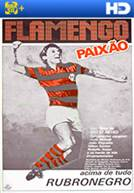 Flamengo Paixão