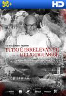 Tudo É Irrelevante - Hélio Jaguaribe