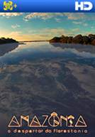Amazônia - O Despertar da Florestania