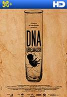 DNA Abdelmassih